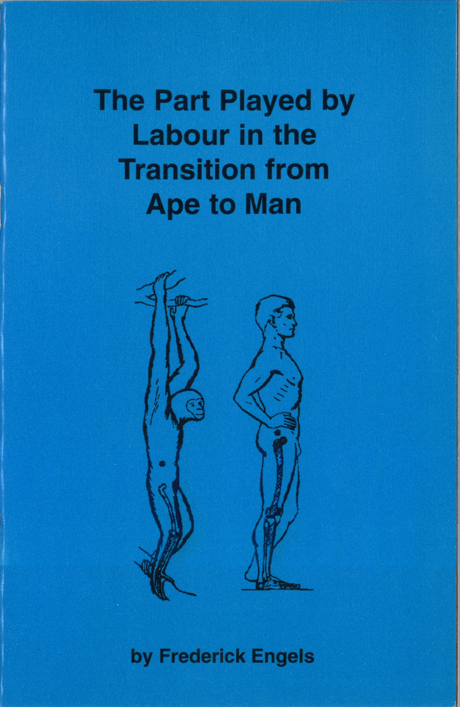 The Part Played By Labour In The Transition From Ape To Man
