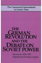 The German Revolution and the Debate on Soviet Power